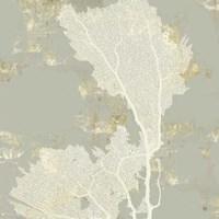 Sea Coral II Fine-Art Print