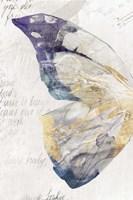 Butterfly Effect II Fine-Art Print