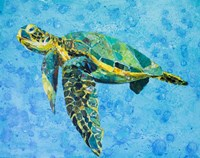 Floating Sea Turtle Fine-Art Print