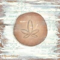 Ocean Sand Dollar Fine-Art Print