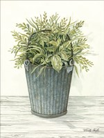 Old Bucket of Greenery Fine-Art Print