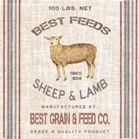 Best Feeds Fine-Art Print