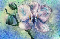 Orchid Watercolor Fine-Art Print