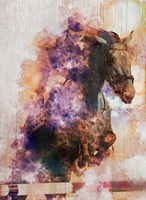 Horse Jumping Fine-Art Print
