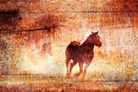 Horses Running Free Fine-Art Print