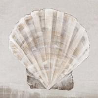 Neutral Shells II Fine-Art Print