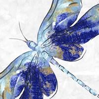Blue Dragonfly Fine-Art Print