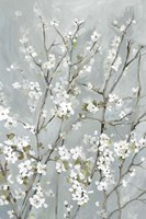 Light Almond Blossoms Fine-Art Print