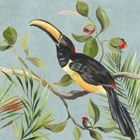Paradise Toucan II Fine-Art Print