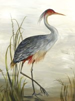 Grey Heron Fine-Art Print