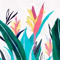 Alpinia I Fine-Art Print