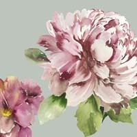 Pink Peony I Fine-Art Print