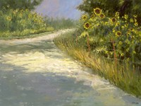 Springmill Lane Fine-Art Print