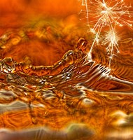 Spark Of Honey Fine-Art Print