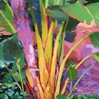 Palm Impressions 3 Fine-Art Print