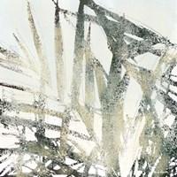 Palms 1 Fine-Art Print