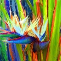 Bird of Paradise 2 Fine-Art Print