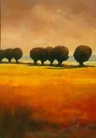 Pollard Willow II Fine-Art Print
