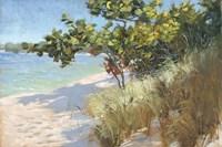 West Coast Seagrapes Fine-Art Print