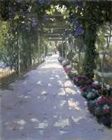 Garden O fLight Fine-Art Print