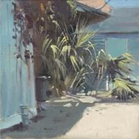 Palm Glory Fine-Art Print