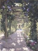 Pergola Violet Watercolor Fine-Art Print