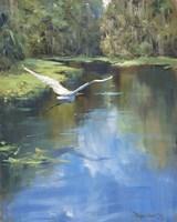 Buzzing The River Fine-Art Print