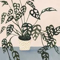 Houseplant I Fine-Art Print