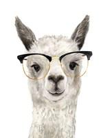 Hip Llama IV Fine-Art Print