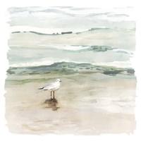 Seagull Cove I Fine-Art Print