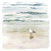 Seagull Cove II Fine-Art Print