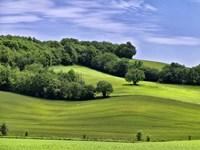 Pastoral Countryside II Fine-Art Print