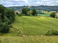 Pastoral Countryside V Fine-Art Print