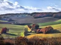 Pastoral Countryside IX Fine-Art Print