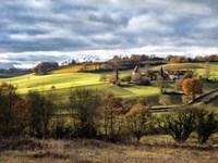 Pastoral Countryside XVIII Fine-Art Print