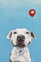 Party Dog V Fine-Art Print