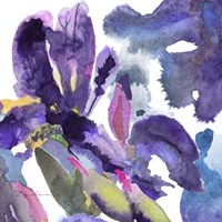 Watercolor Flower Composition II Fine-Art Print