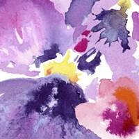 Watercolor Flower Composition IV Fine-Art Print