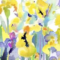 Watercolor Flower Composition VI Fine-Art Print