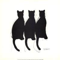 Katzenmusik Fine-Art Print