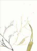 Under Sea Forest II Fine-Art Print