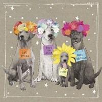 Fancypants Wacky Dogs V Fine-Art Print