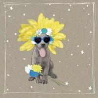 Fancypants Wacky Dogs VI Fine-Art Print