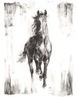 Rustic Black Stallion I Fine-Art Print