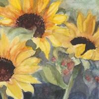 Sunflowers in Watercolor II Fine-Art Print