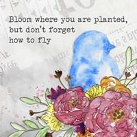 Bloom & Fly II Fine-Art Print