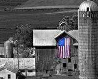 Flags of Our Farmers XI Fine-Art Print