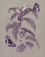 Nature Study in Plum & Taupe I Fine-Art Print