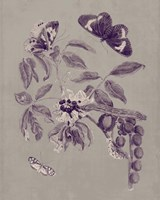 Nature Study in Plum & Taupe II Fine-Art Print