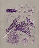 Nature Study in Plum & Taupe III Fine-Art Print